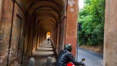 Ducati Monster 821 - Immagine: 25