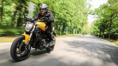 Ducati Monster 821: la prova del mostro di mezzo - Immagine: 1