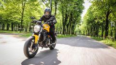 Ducati Monster 821: la prova del mostro di mezzo - Immagine: 13