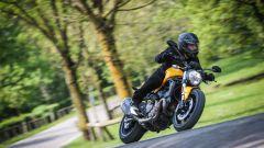 Ducati Monster 821: la prova del mostro di mezzo - Immagine: 15