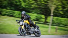 Ducati Monster 821: la prova del mostro di mezzo - Immagine: 16