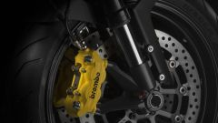 Ducati Monster Diesel - Immagine: 10