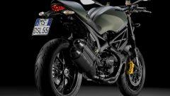 Ducati Monster Diesel - Immagine: 5