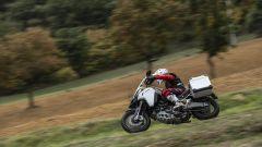 Ducati Multistrada 1260 Enduro: prova su strada e off-road - Immagine: 11