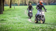 Ducati Scrambler Desert Sled e Triumph Street Scrambler, entrambe non hanno paura dello sterrato