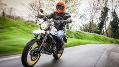 Ducati Scrambler Desert Sled, sul guidato piace