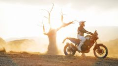 Yamaha Ténéré 700 World Raid: praticamente di serie [VIDEO] - Immagine: 18