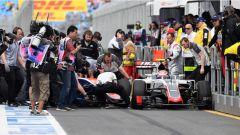 F1 2016 Qualifiche GP Australia: Pole Hamilton, qualifiche un fallimento! - Immagine: 3