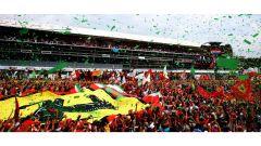 F1 2017 GP Monza, i tifosi Ferrari