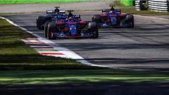 F1 2017 GP Monza, le Toro Rosso in azione