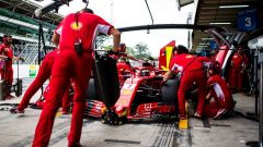 """GP Brasile, Vettel: """"Avevo uno scoiattolo tra i piedi..."""" - Immagine: 2"""