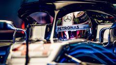 """GP Brasile, Vettel: """"Avevo uno scoiattolo tra i piedi..."""" - Immagine: 7"""