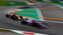 GP Italia: le pagelle di Monza - Immagine: 14
