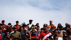 GP Italia: le pagelle di Monza - Immagine: 17