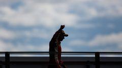 GP Italia: le pagelle di Monza - Immagine: 20