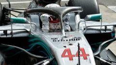 GP Italia: le pagelle di Monza - Immagine: 34