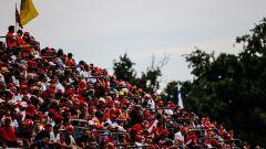 GP Italia: le pagelle di Monza - Immagine: 60