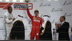 """F1 Bahrain, Leclerc: """"Bella sensazione avere il passo per vincere"""" - Immagine: 7"""