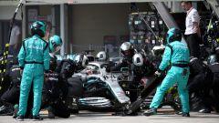 F1, GP Brasile 2019: pit-stop di Lewis Hamilton (Mercedes)