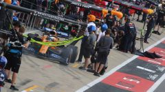 F1 GP Gran Bretagna 2019, Lando Norris ai box