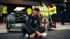 F1, GP Portogallo 2020: Hamilton e l'ingegner Roscoe