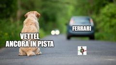 F1, GP Spagna 2020: la Ferrari abbandona Vettel