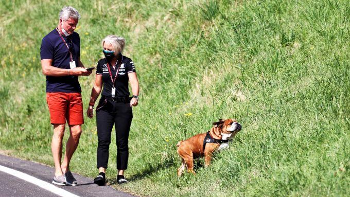 F1, GP Stiria 2021: David Pupùlthard
