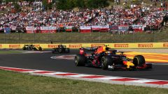 F1 GP Ungheria 2019, Hungaroring, Pierre Gasly (Red Bull)