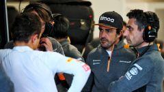 Fernando Alonso a colloquio con Lando Norris