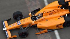 Fernando Alonso - Andretti Autosport, Formula Indy