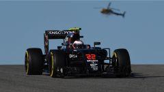 Fernando Alonso - F1 GP USA