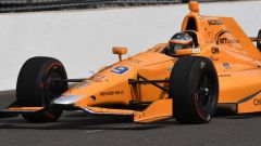 Fernando Alonso - Indianapolis Racing