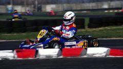 Fernando Alonso - World Karting Championship (1997)