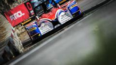 FIA Europeo Montagna: Faggioli e Magigas ancora insieme - Immagine: 1