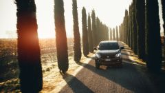 Fiat Fullback Cross, basta con i soliti pick up - Immagine: 6