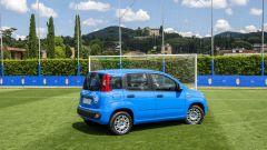 Fiat Pandazzurri: una serie speciale per Euro 2016 - Immagine: 8