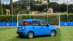 Fiat Pandazzurri: una serie speciale per Euro 2016 - Immagine: 4