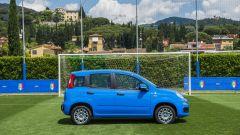 Fiat Pandazzurri: una serie speciale per Euro 2016 - Immagine: 12
