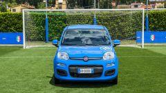 Fiat Pandazzurri: una serie speciale per Euro 2016 - Immagine: 14