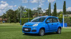 Fiat Pandazzurri: una serie speciale per Euro 2016 - Immagine: 15