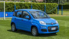 Fiat Pandazzurri: una serie speciale per Euro 2016 - Immagine: 16