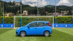 Fiat Pandazzurri: una serie speciale per Euro 2016 - Immagine: 17