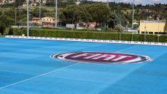 Fiat Pandazzurri: una serie speciale per Euro 2016 - Immagine: 26