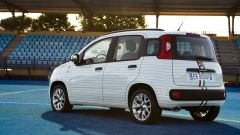 Fiat Pandazzurri:c'è anche bianca