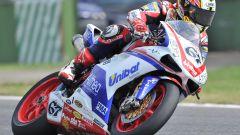 FMI: Team Italia anche nella Superbike - Immagine: 10