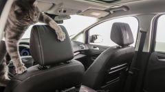 Ford C-Max: prove di distruzione - Immagine: 37