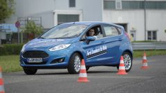 Ford Driving Skills for Life - Immagine: 1