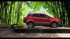 Ford EcoSport - Immagine: 22