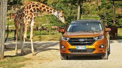 Ford Edge: la prova di Mark Grylls  - Immagine: 1