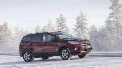 Ford Kuga: il paesaggio lappone è stato un ottimo banco di prova per la rinnovata suv dell'Ovale Blu